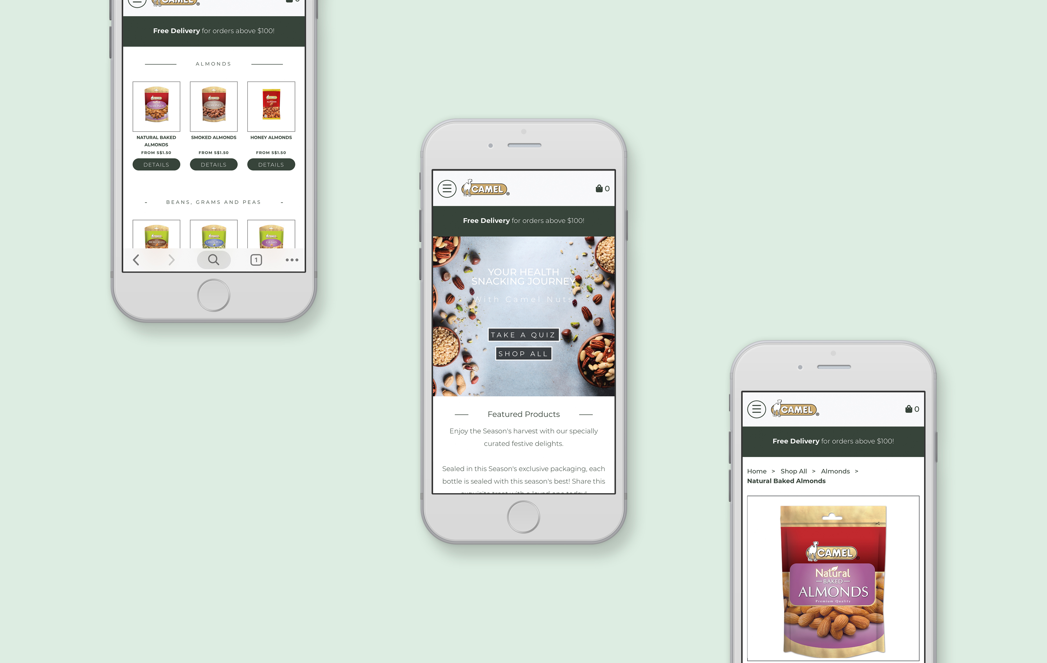 Camel Nuts mobile web design