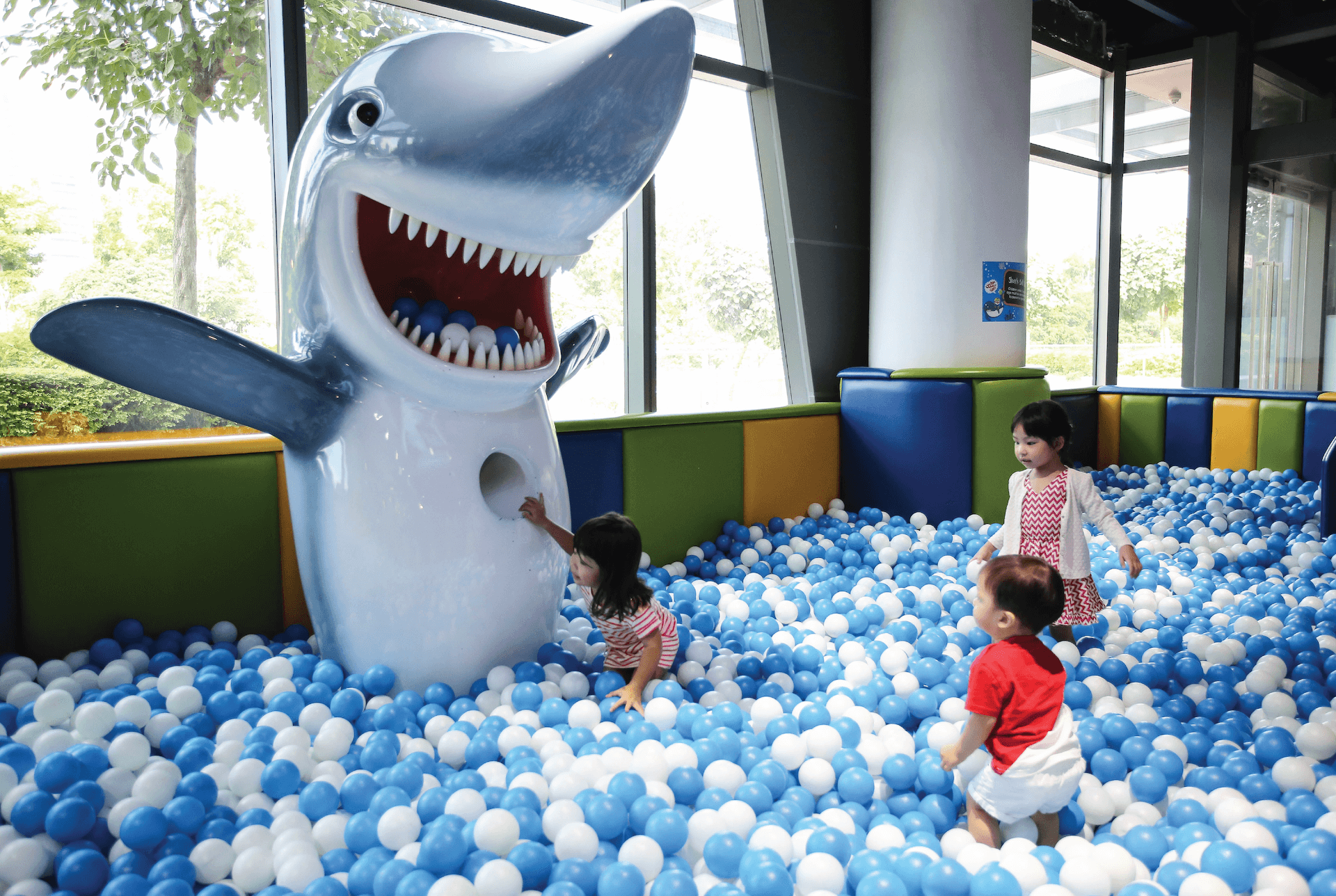 Shark Ball Pool with Mr. Shark at Pororo Park Singapore