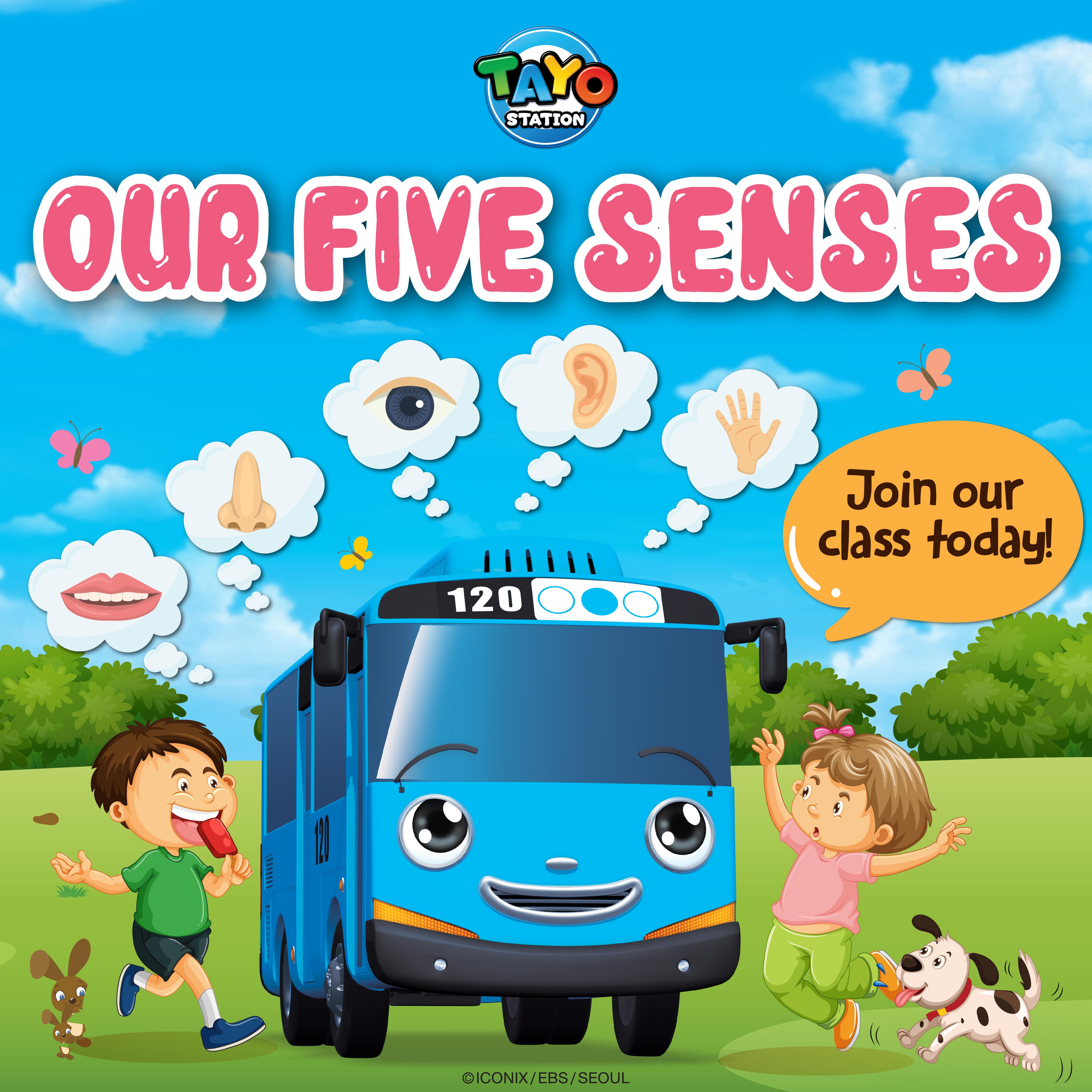 Tayo Sense Class  | Tayo Station